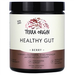 Terra Origin, Healthy Gut, Berry, 8.57 oz (243 g)