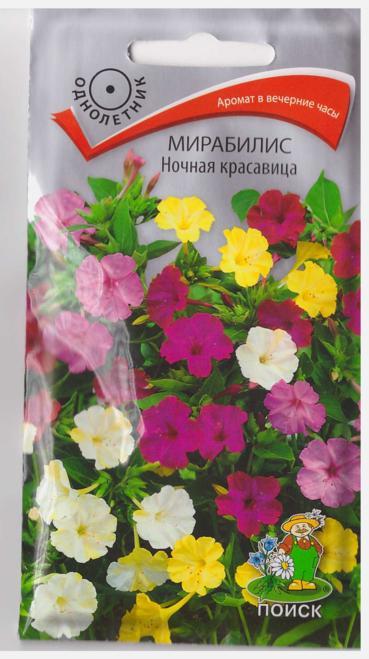 Цветы садовые однолетние и описание